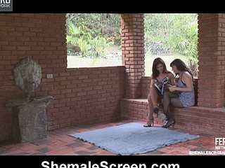 Well-endowed shemale taking advantage of hottie