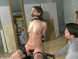 Trained And Punished