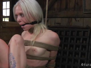 Sarah is in big trouble and she won't get out of it to soon. The beautiful, innocent looking blonde is all tied up and mouth gagged, completely at the mercy of her executor. Well, she doesn't get any mercy and receives a harsh and tormenting treatment. Want to find out what will happen to her?