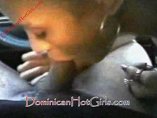 Dick sucking dominicanhoe
