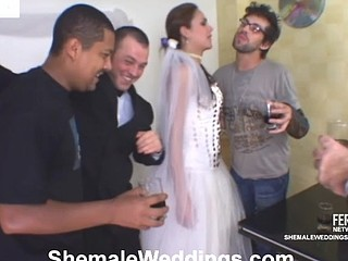Smashing looking shemale bride massaging guy