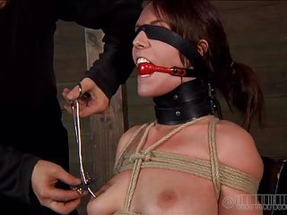 First we put ball gag into her mouth, then add clamps on her pink nipples and after that we leave her there, blindfolded and tied up. This whore is about to receive a harsh and humiliating punishment, just the way she deserves it. Would you like to stay with us and see what we do to these fucking, worthless whores?